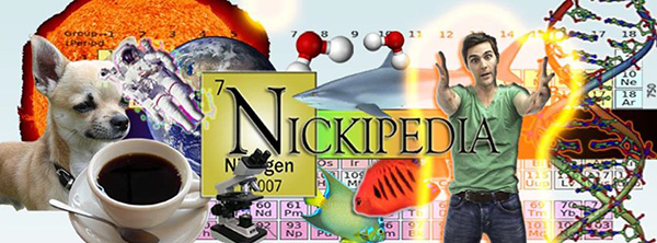 The nickipedia thumbnail from Nick Uhas youtube page. Credit: Courtesy of Nick Uhas
