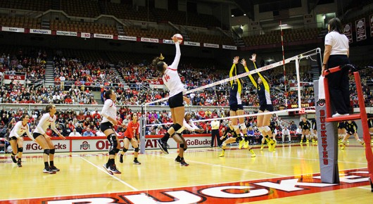 Members of the OSU womens volleyball team during a game against Michigan on Nov. 14. Credit: Giustino Bovenzi | Lantern Photographer