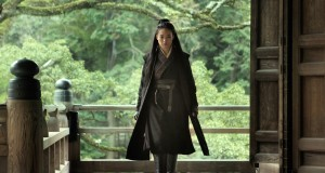 "A still from ""The Assassin."" Credit: Courtesy of Dave Filipi"
