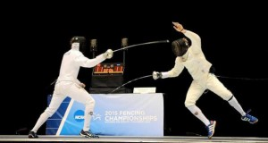 fencing_featured