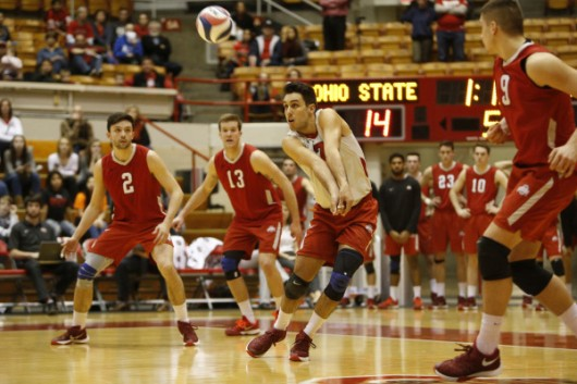 OSU men's volleyball players during a game against Ball State on Feb. 15 at St. John Arena. Credit: Courtesy of OSU