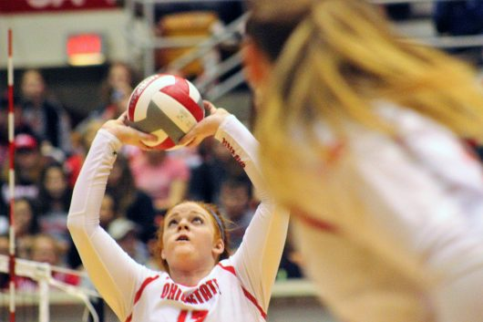 Senior setter Abby Fesl (12) sets the ball during a game against Penn State on Nov. 12 at St. John Arena. Credit: Jenna Leinasars | Assistant News Director