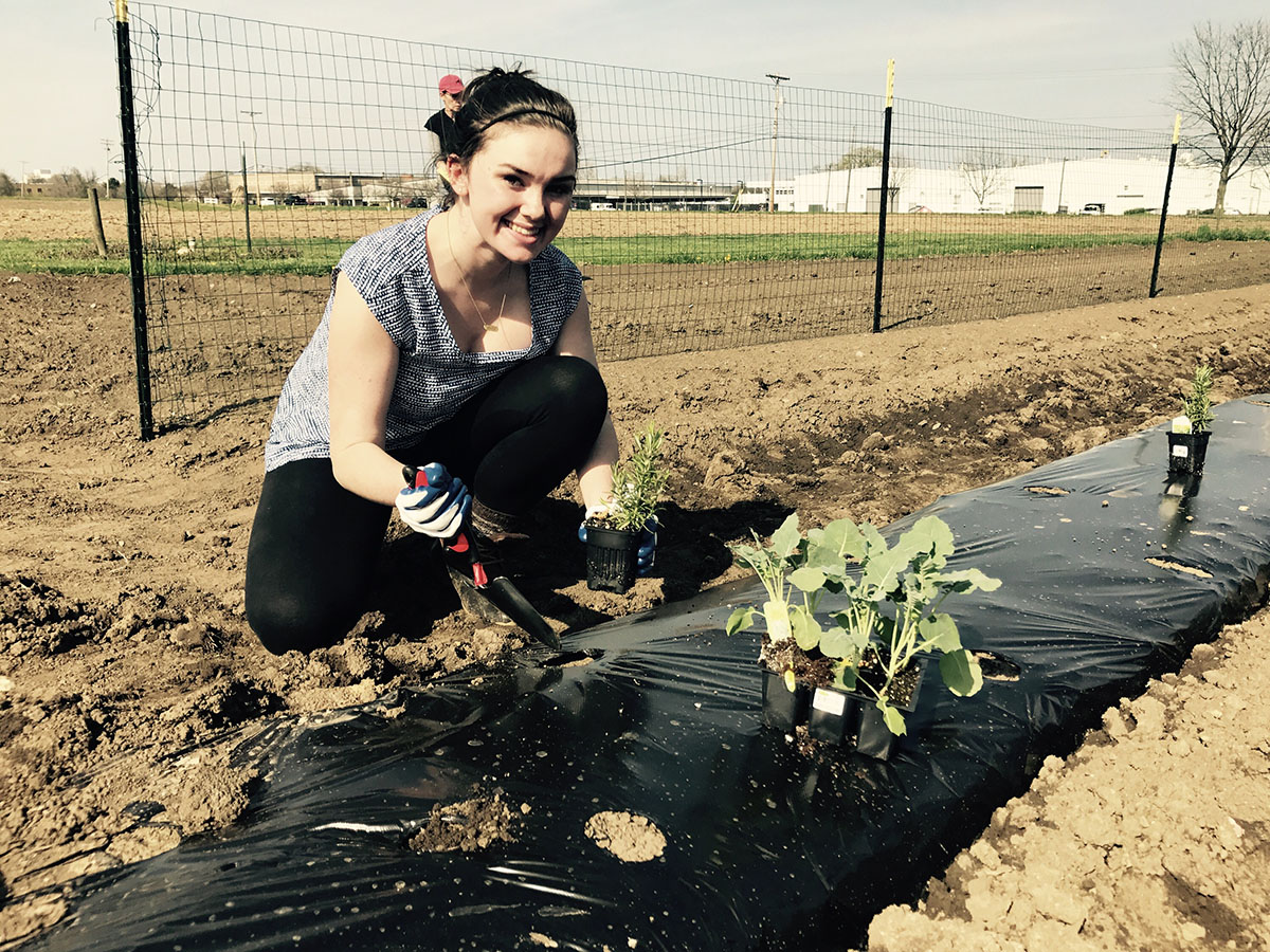 Maggie Griffin, a third-year in social work plants vegetables at Ohio State's Waterman Farm where she plans to grow a community garden to service local families affected by food insecurity. Credit: Courtesy of Maggie Griffin