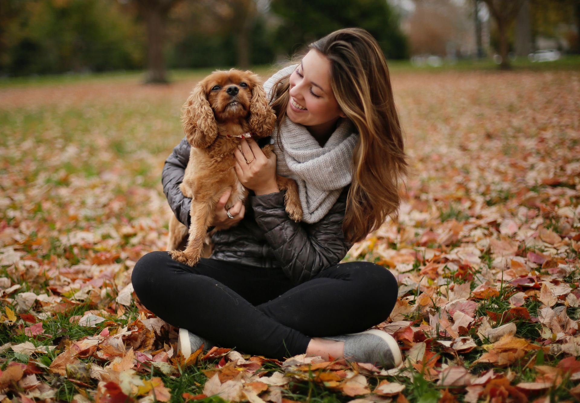 Judge says sorority sister and dog can stay in Chi Omega house until trial