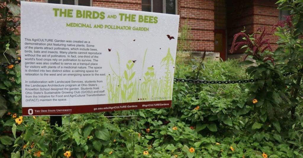 Birds Bats Bees Oh My Pollinator Garden Comes To 18th Avenue