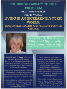Patti Wood flyer 11-11-14