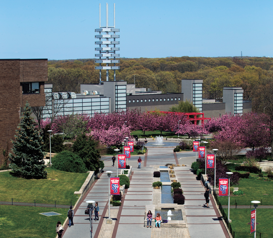 Stony brook university in state tuition-5159