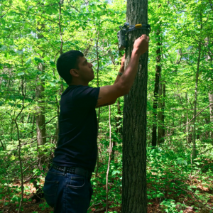 Photo 1. Student Andrew Fiorenza hangs a camera trap in the Ashley Schiff Park Preserve. He received funding from the Friends of Ashley Schiff to conduct this project.