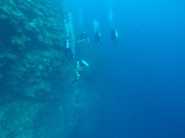 Some classmates and Dr. Warren diving at Rio Bueno this morning perfecting their neutral buoyancy along the wall.