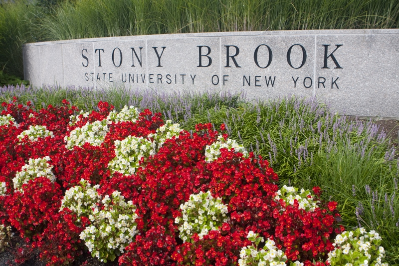 Stony brook athletics jobs-8961