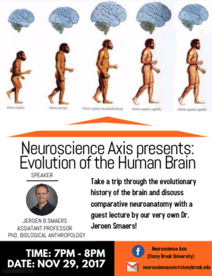 the evolution of the human mind Evolution of the brain jump to  the increase has been seen as larger human brain volume as we progressed along the human timeline of evolution.