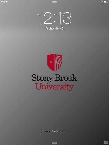 Stony brook university hospital jobs-7120