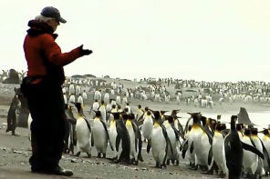 Penguin expert Ron Naveen of Oceanites discusses Antarctic conservation and policy with MCP students
